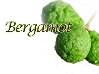 bergamothdr_1